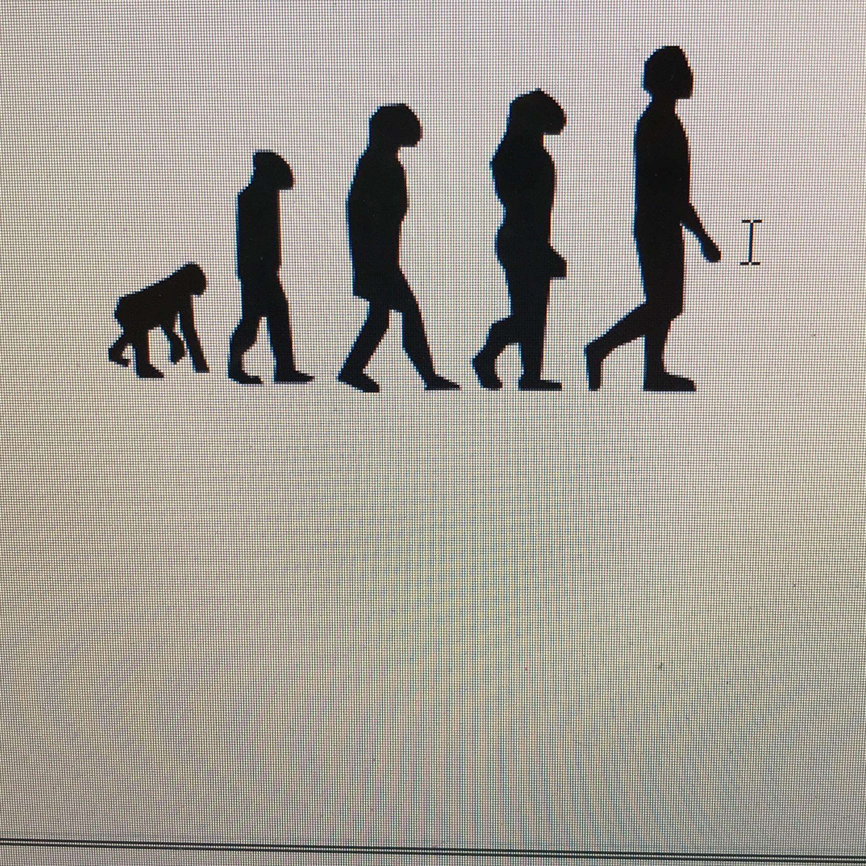 Gehört das zur Evolution? (Biologie, Evolutionstheorie