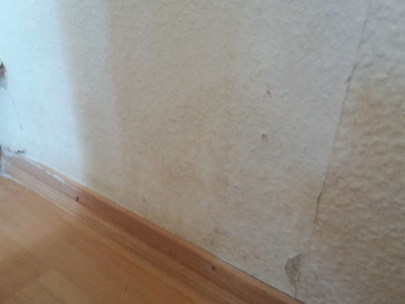 Ecke Außenmauer Fenster - (Schimmel, Stockflecken)