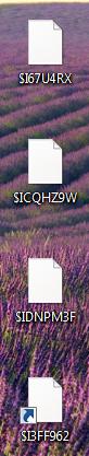 Wiederhergestellte Dateien auf dem Desktop - (Computer, Internet, Technik)