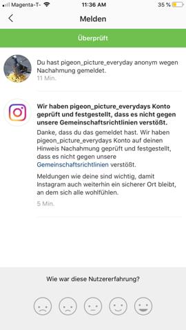 instagram fake account melden