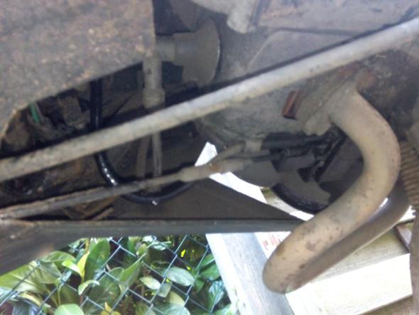 Das schwarze Kabel mit den öl Tropfen ist gemeint - (Elektronik, Roller, Generetik Xor 50)