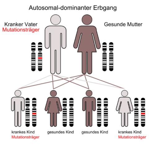 Das Bild - (Biologie, Mutation, Gen)