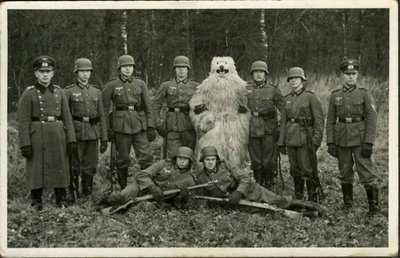 Ominöser Wehrmachts-Bär - (Geschichte, Wehrmacht, Bär)