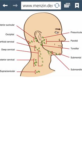 Lymphknoten unterm ohr