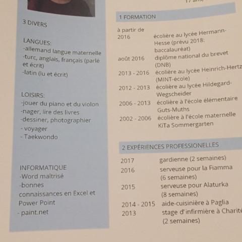 Gibt Es Einen Fehler In Meinem Französischen Cv Und Lettre De