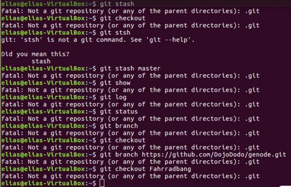 Fehlermeldung - (programmieren, Ubuntu, git)