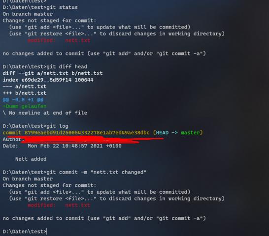 Git: Kiste mag nicht commiten?