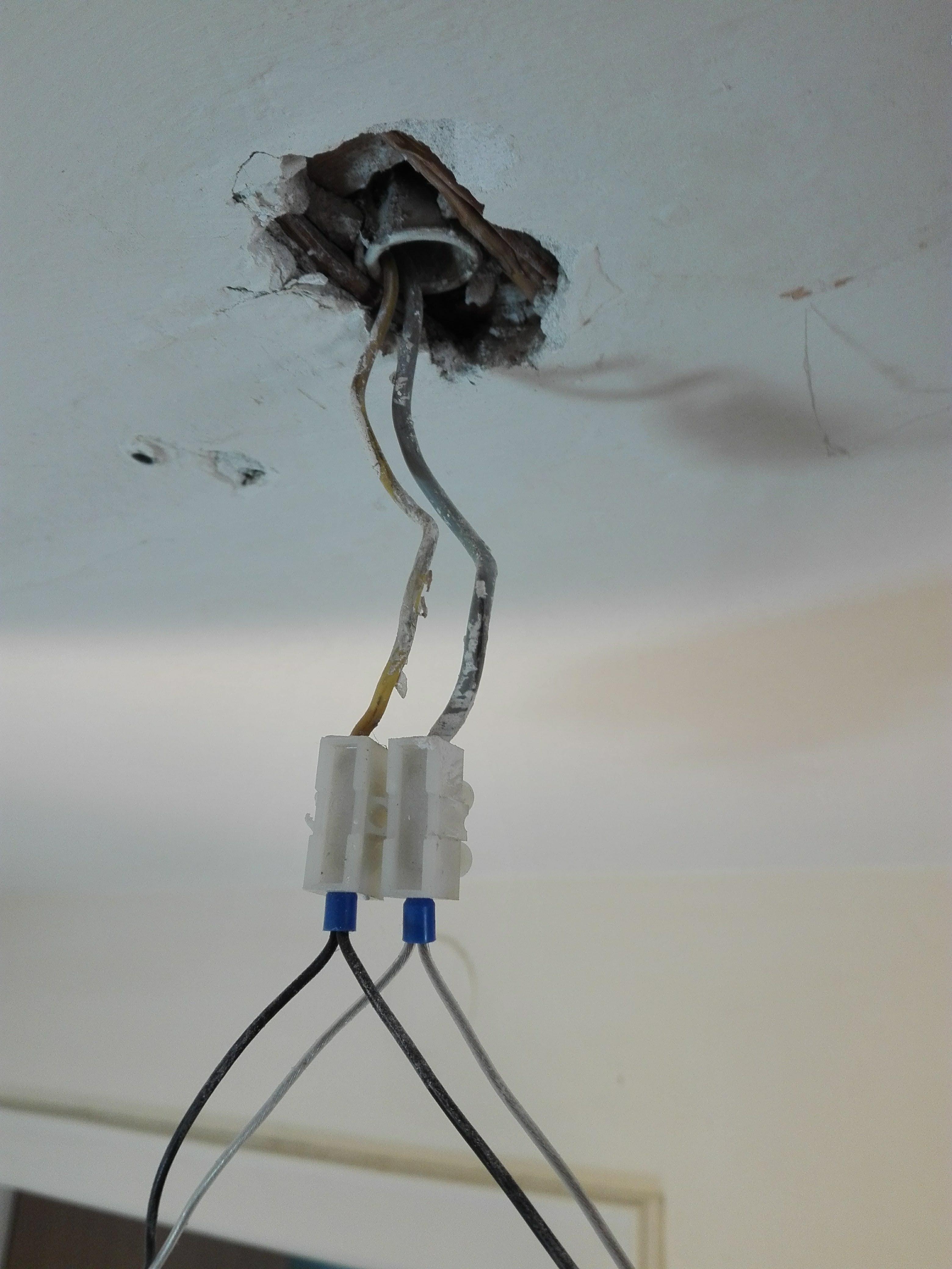 grau und gelbes kabel zum anschlie en einer neuen deckenlampe computer technik technologie. Black Bedroom Furniture Sets. Home Design Ideas