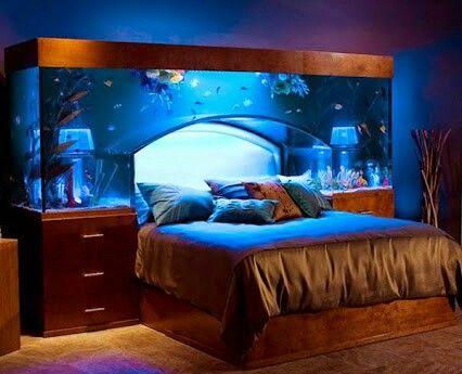 großes aquarium im schlafzimmer? (aquaristik), Schalfzimmer deko