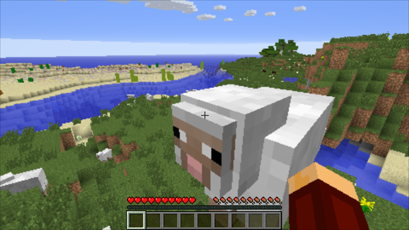 Großes Minecraft AntiAliasing Problem Grafikkarte PCSpiele Nvidia - Minecraft pc spiele