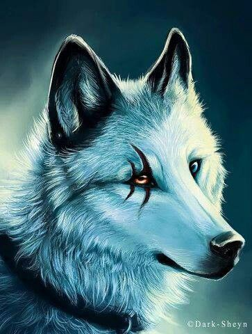 Silver Star Auto >> Gute Fantasy Namen für Wölfe?