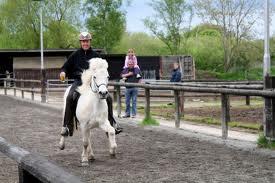 Beispiel für einen Bierglastölt - (Pferde, reiten, Pony)