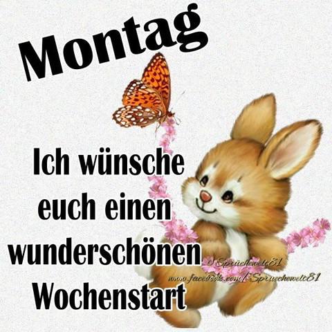 Guten Montag Morgen Habt Ihr In Eurem Leben Schon Gute Taten