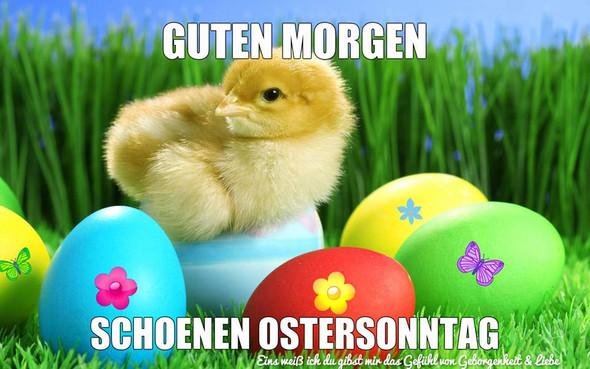Guten Morgen am Ostersonntag, wie gefällt euch allen Ostern und was könnt ihr diesem Fest persönlich abgewinnen?