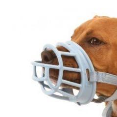 Bfkfdg - (Liebe, Tiere, Hund)