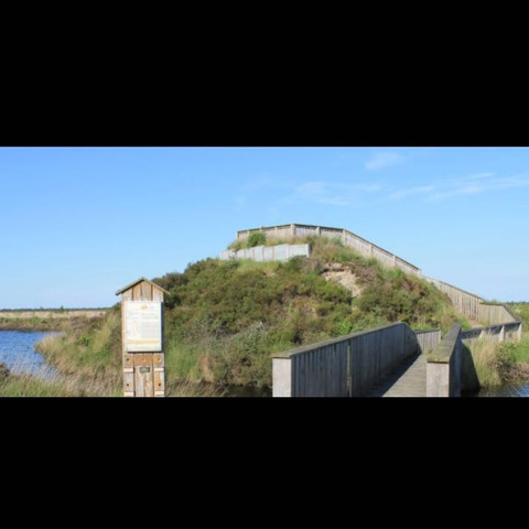 Aussichtsplattform mitten im Moor, weit und breit nichts, außer Wasser, Vögel - (Freundin, Ort, Picknick)