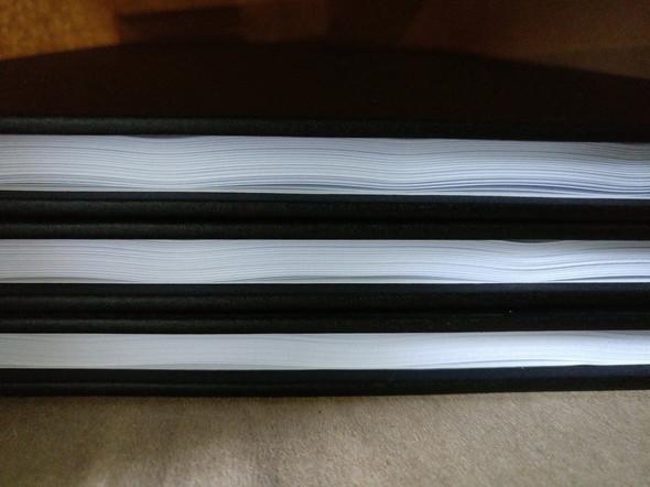 Wellige Bachelorarbeit 1 - (Studium, studieren, drucken)