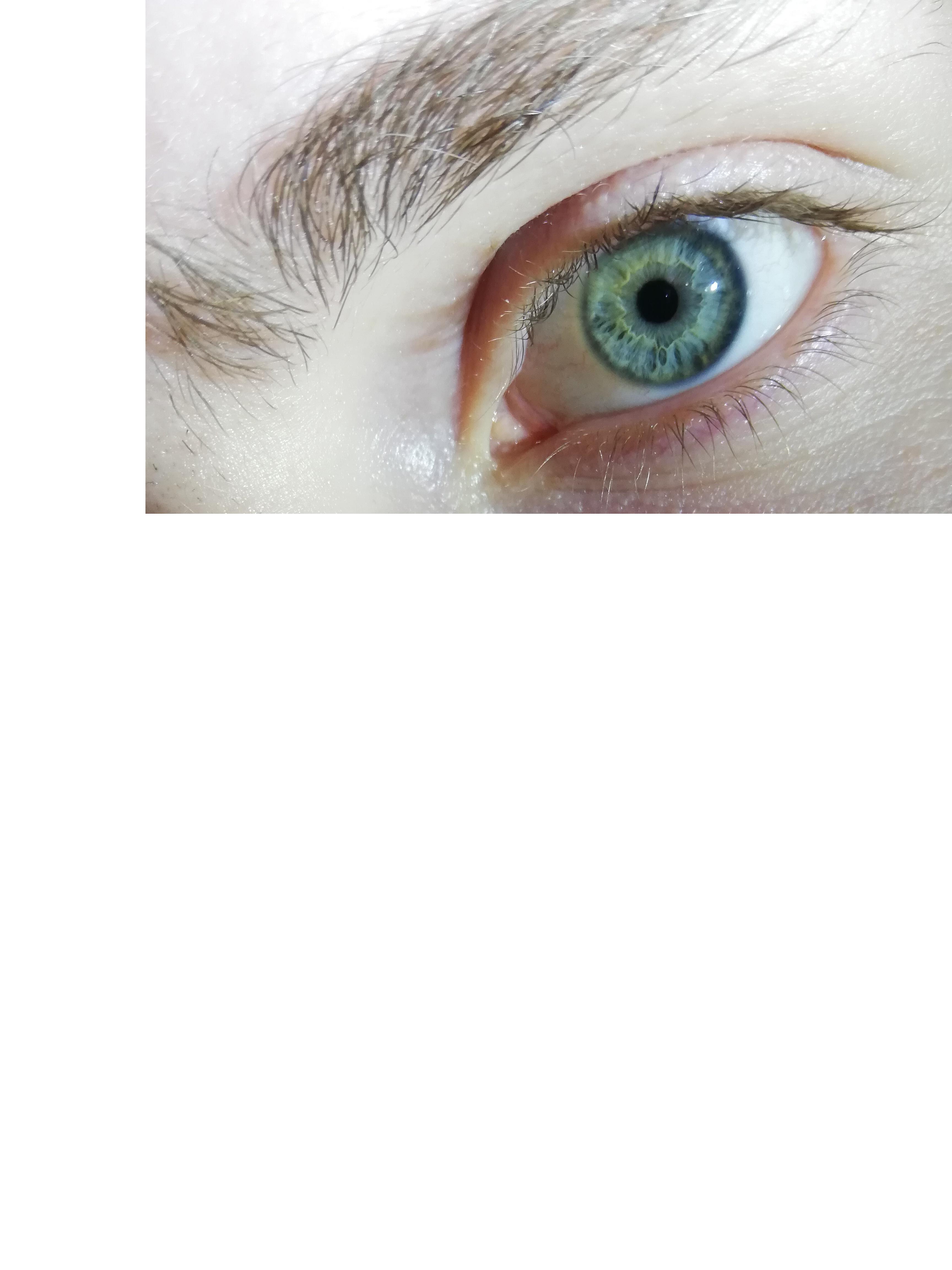 Habe ich blaue oder grüne Augen? Bild ist dabei? (Augenfarbe)