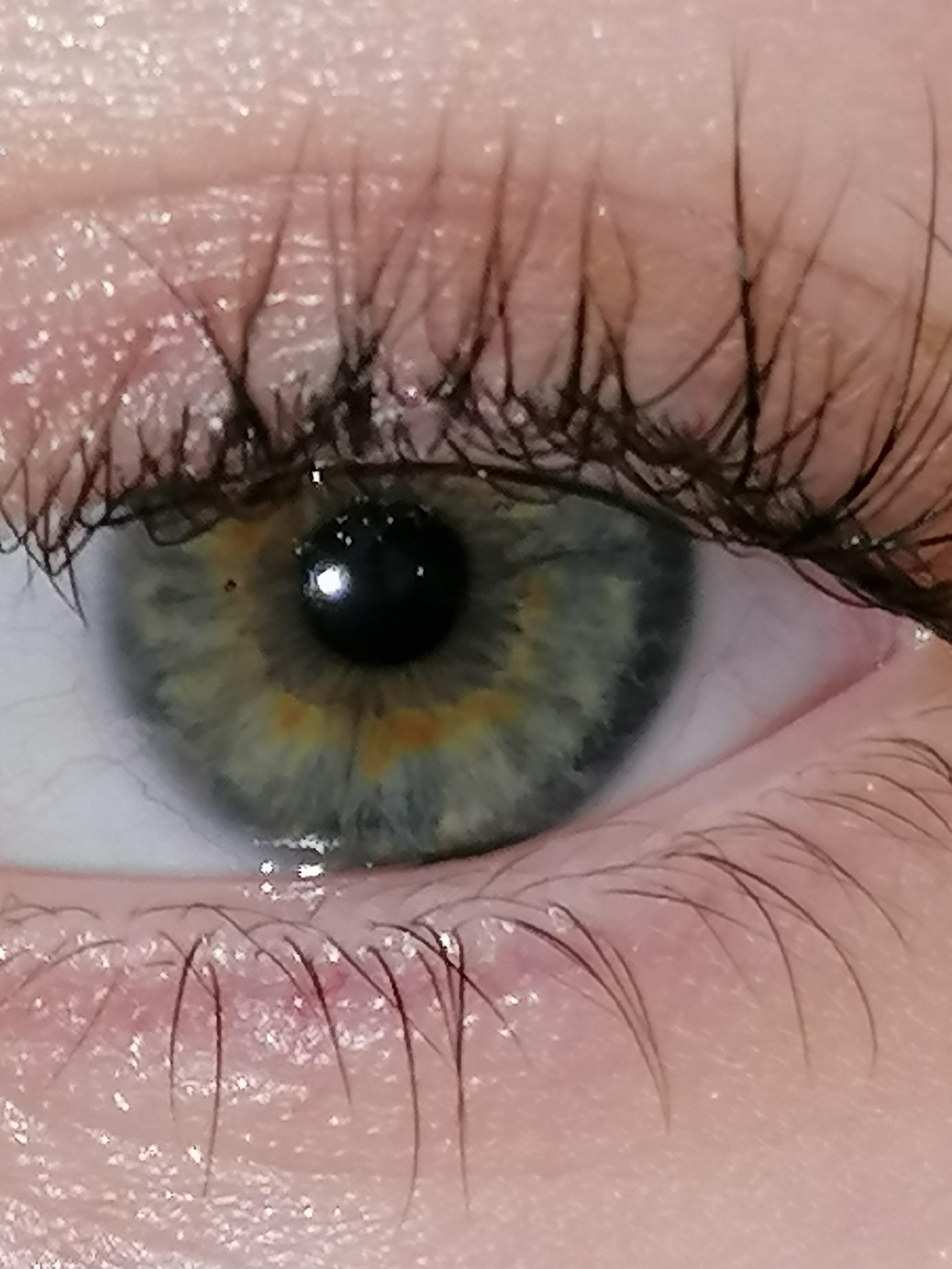 Augenfarbe Hazel