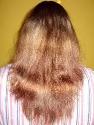 die Haarstruktur - (Haare, Frisur)