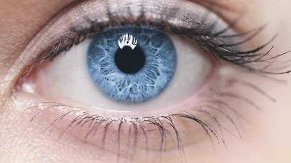 Haben Wie Alle Die Gleiche Augenlinse Grosse Augen