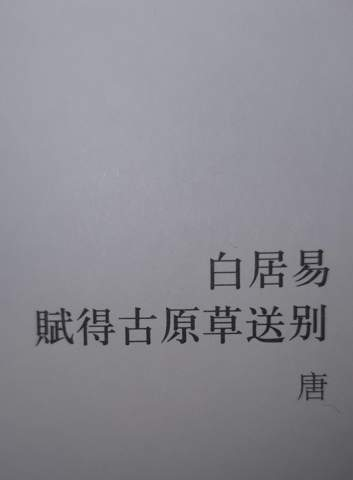 Habt ihr eine Idee, wie das Gedicht noch heißen könnte (chinesisch)?