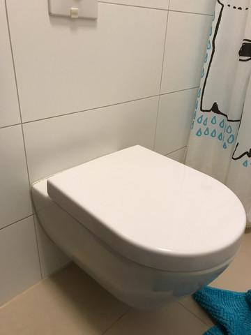 Hänge Wc Tropft Nach Spülung Gesundheit Und Medizin Toilette