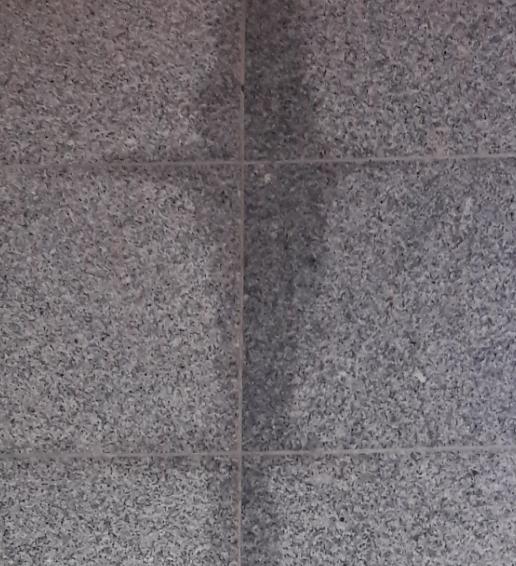 hallo hab den boden mit granit reiniger geschrupt und danach trocken gewischt heute morgen war. Black Bedroom Furniture Sets. Home Design Ideas
