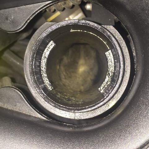 Öl schleim - (Öl, Schleim)