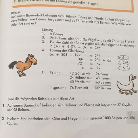 Das ist die Aufgabe - (Schule, Mathe, Mathematik)