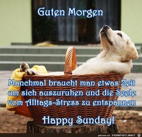 Hallo Und Ein Guten Morgen Heute Am Sonntag Erinnert Ihr