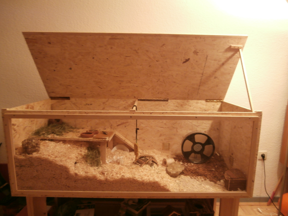 hamster terrarium bauen 3 holzw nde gesund f r hamster. Black Bedroom Furniture Sets. Home Design Ideas