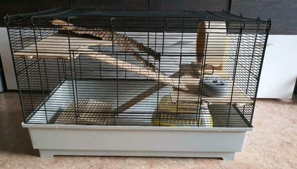 Hamsterkäfig artgerecht?