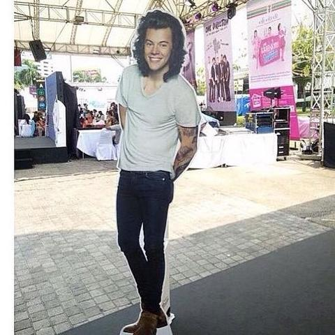 Die Pappfigur  - (One Direction, Harry Styles, zayn malik)
