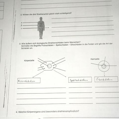 Erfreut Wer Bin Ich Chemie Arbeitsblatt Antworten Ideen ...