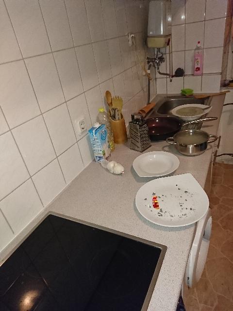 Hilfe Was Kann Sollte Ich Tun Kuchenschabe Nachbarn Kafer
