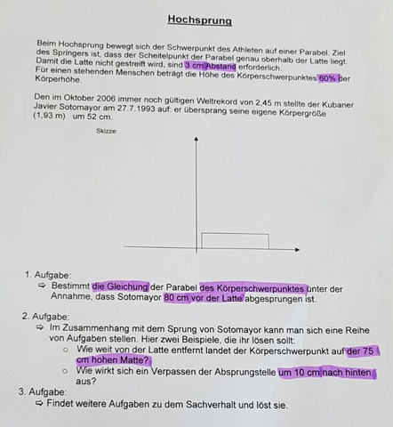 Hochsprung Aufgabe - (Mathematik, Funktion)