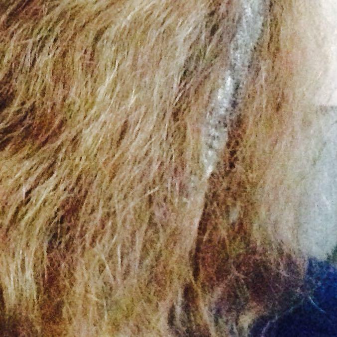 Pflege fur blondes kaputtes haar