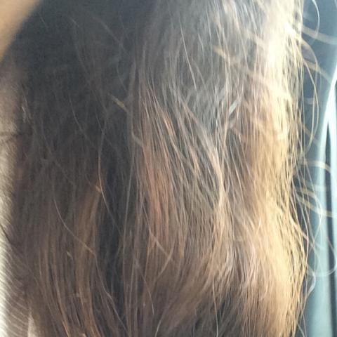 hilfe meine haare sund kaputt oder ist das so normal garten
