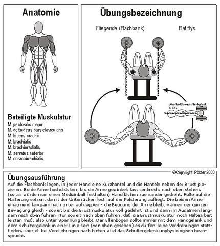 Bild 1 - (Gesundheit, Sport, Beauty)