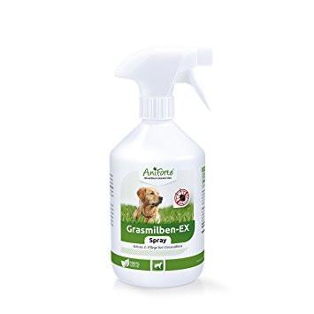 Mittel gegen Flöhe - (Internet, Hund, Gesundheit und Medizin)