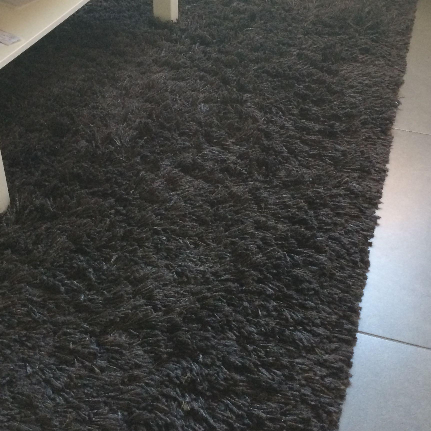 hochflor teppich haare entfernen wie haushalt hygiene waschen. Black Bedroom Furniture Sets. Home Design Ideas
