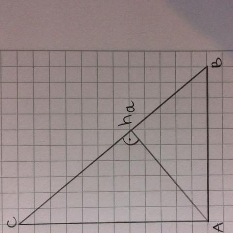 Das rechtwinklige Dreieck - (Mathe, Geometrie, Dreieck)