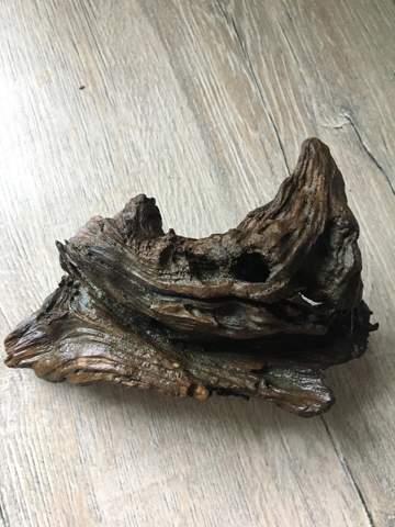 Holz in Mikrowelle desinfizieren?