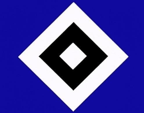 HSV-Frisur wegen Klassenerhalt: Glatze oder blaue Haare mit Logo?