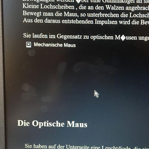 Im Browser  - (Computer, Schule, Internet)