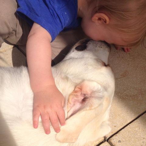 Am Kuscheln  - (Hund, Baby, bemuttern)