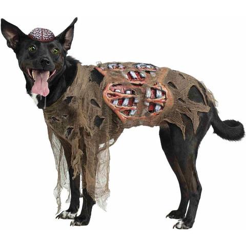 Hund An Fasching Als Zombie Verkleiden Kostum