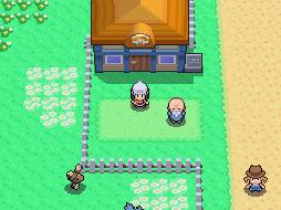Die Pension in Pokemon Diamant - (Spiele, Pokemon)