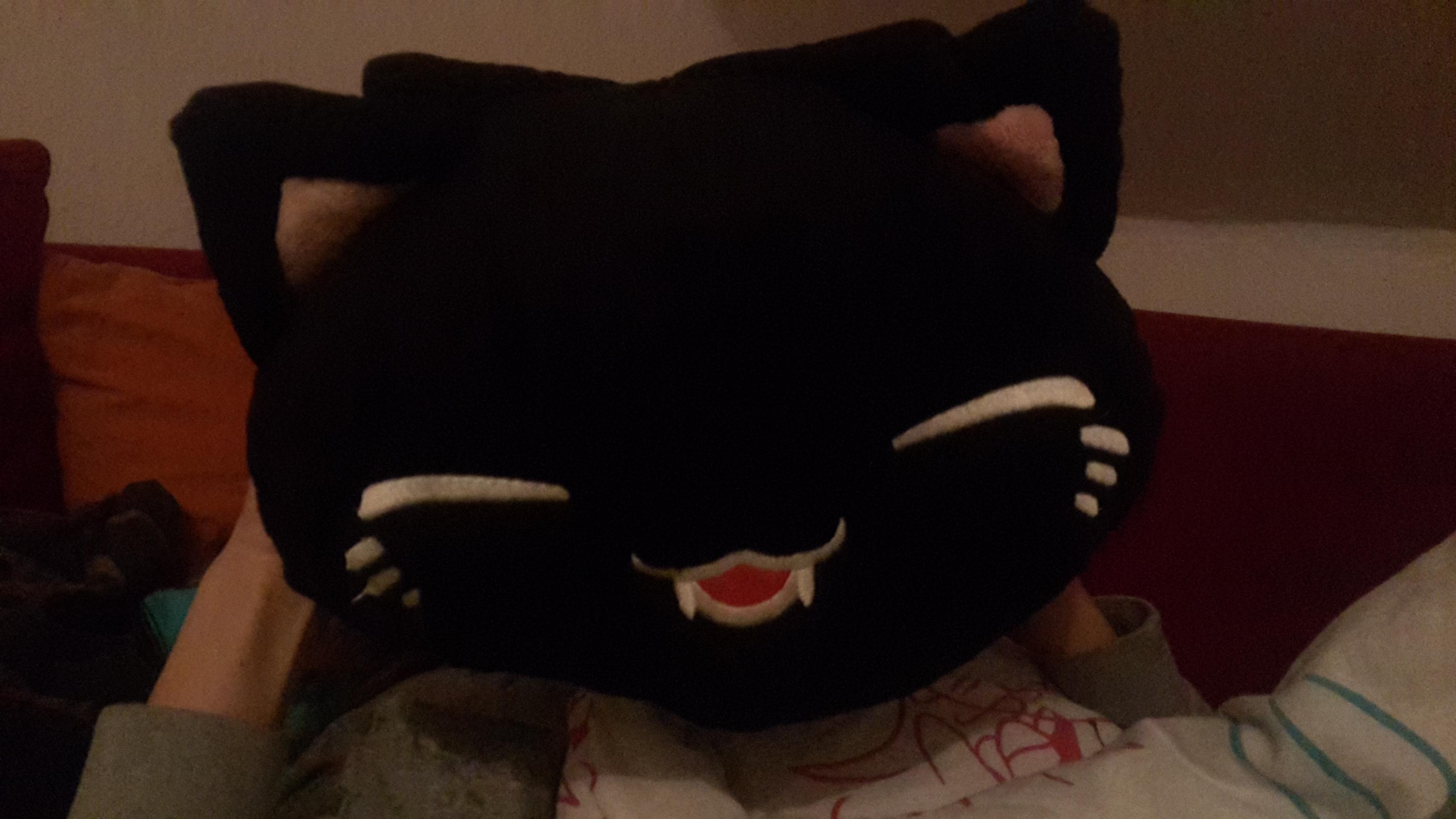 ich habe ein katzen kissen auf der gamescom gekauft und w rde gerne wissen wie es hei t oder so. Black Bedroom Furniture Sets. Home Design Ideas